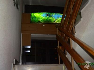 akwarium panoramiczne 02