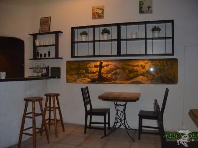 terrarium w ścianie 01